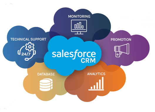 Salesforce Nonprofit Cloud Consultants