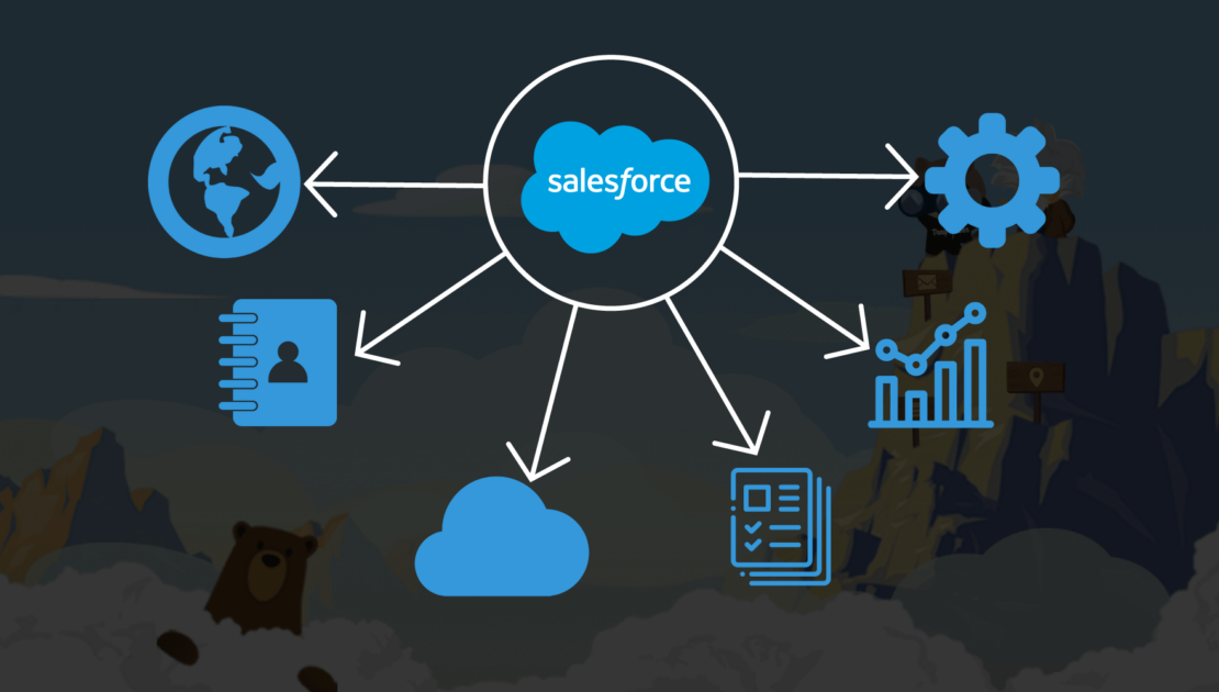 Managed Services for Salesforce