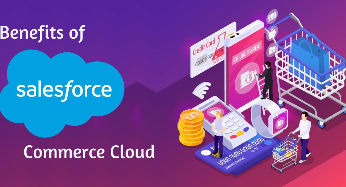 B2B and B2C Salesforce Commerce cloud